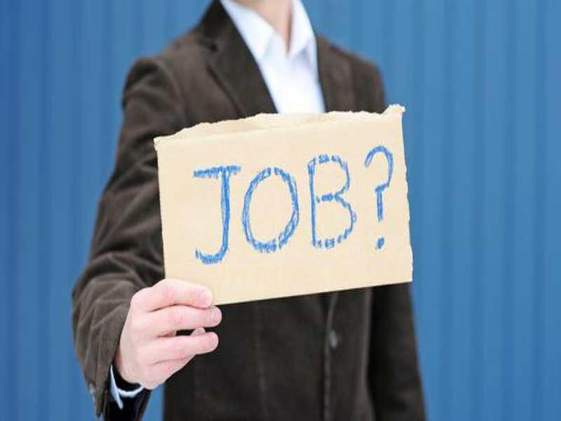 چگونه پس از مهاجرت کردن شغلی به دست بیاوریم؟